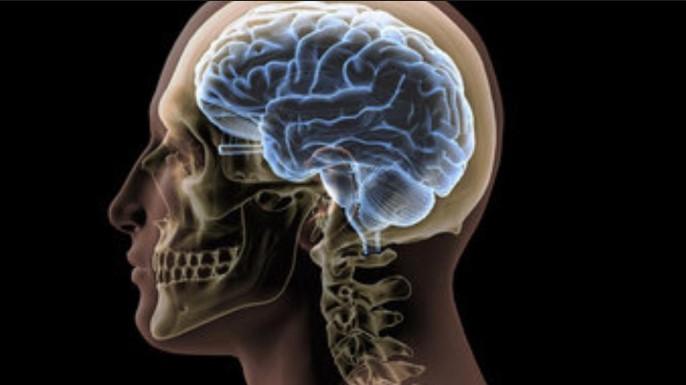 El producto se construye en el cerebro