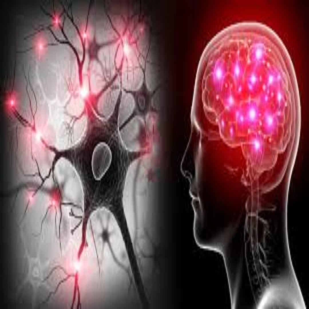 ¿Cómo se aplican los avances de las neurociencias en las áreas clave de las organizaciones?
