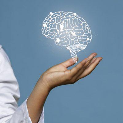 Neuroplasticidad: Todos Podemos Tener El Cerebro Que Queremos Tener