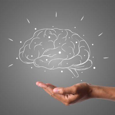 Neurociencias Aplicadas: ¿Por Qué Debemos Ir Al Gimnasio Cerebral?